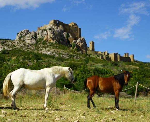 loarre-a-caballo